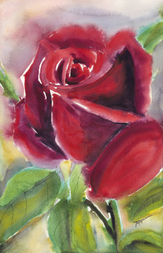 Single Rose #2