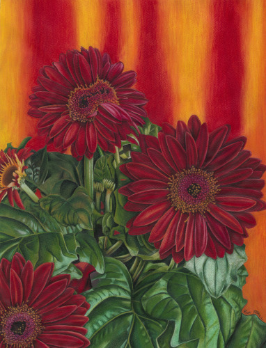 Fire Daisies by Rick Tuthill - Everett Wa