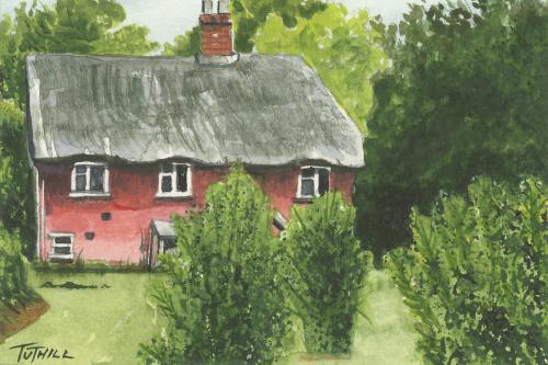 Cottage Back Garden