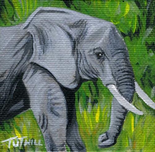 Shelly's Elephant