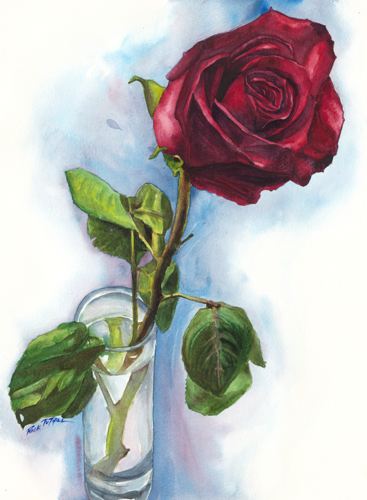 Donna's Rose 2