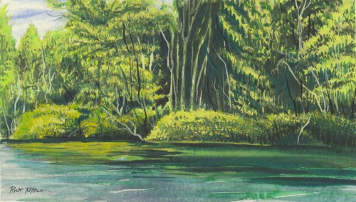 Twin Lakes Shoreline