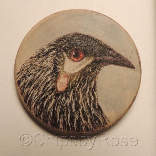 Sapsucker bird