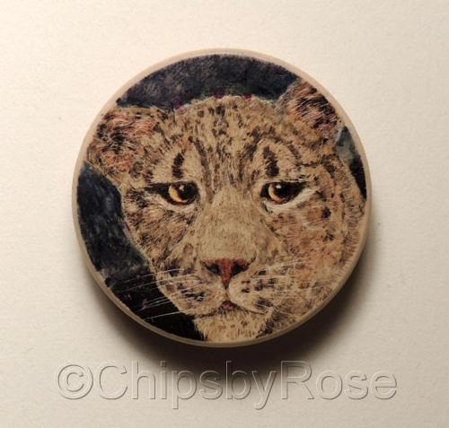 Leopard Side Glance