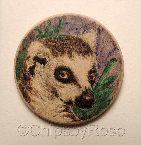 lemur looking