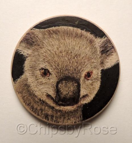 Kuala bear