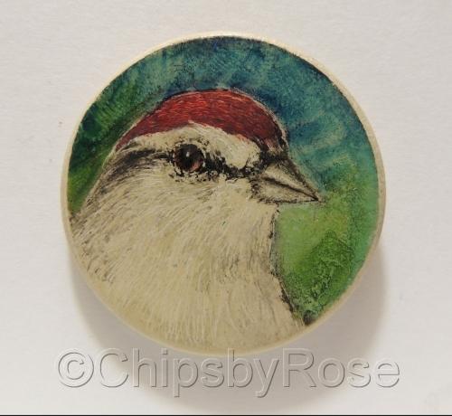 Finch Red Cap