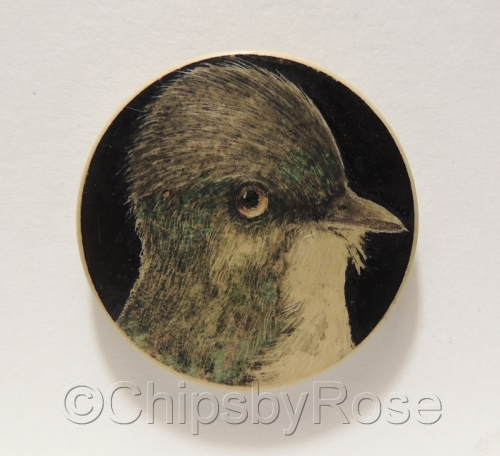 Bird Phobe