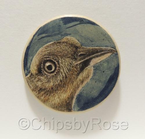 Bird Brown Blue Background