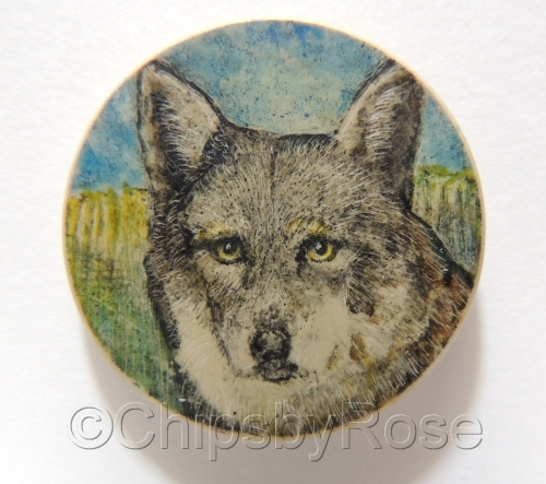 Wolf Yellow Eyes