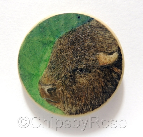 Bison Green