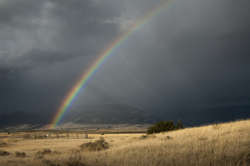 Rainbow Ranch by Rudy DeRam