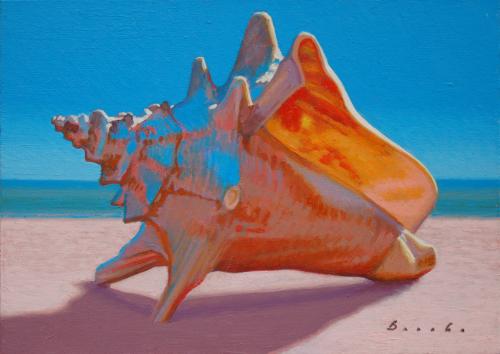 Conch III