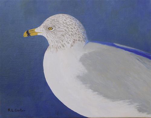 Portrait of a Gull by Robert Carter