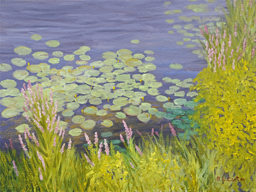 Loostrife and Water Lilies