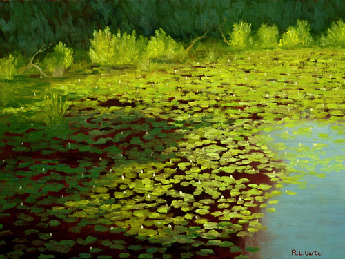 Lily Pond -- Morning
