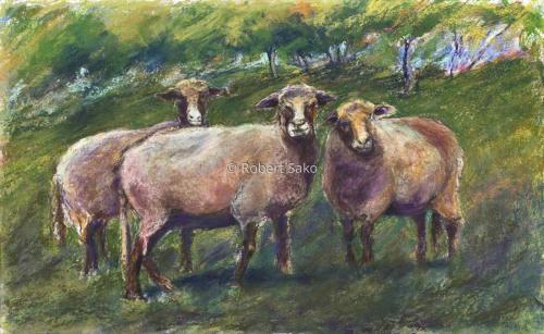 Helga's Sheep