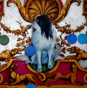 dog painting, animal painting, Japanese Chin, neo-rococo, postmodern painting, figurative, narrative, decorative painting - Animals Painting