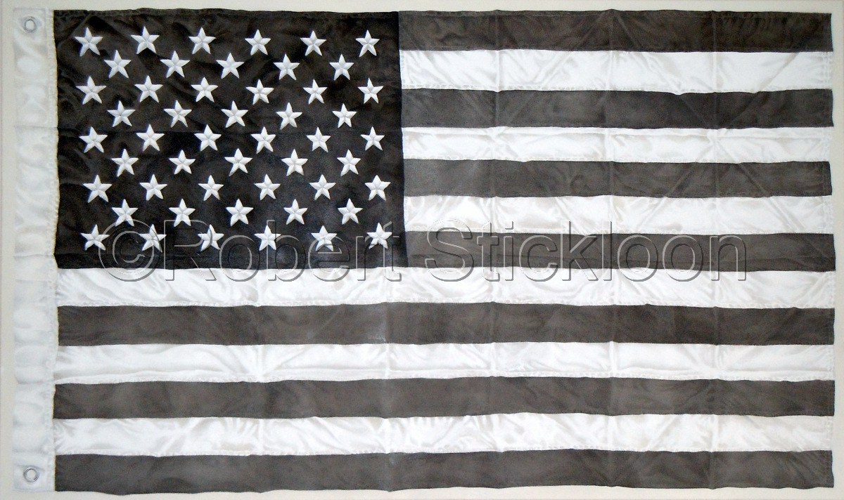 American Flag (large view)