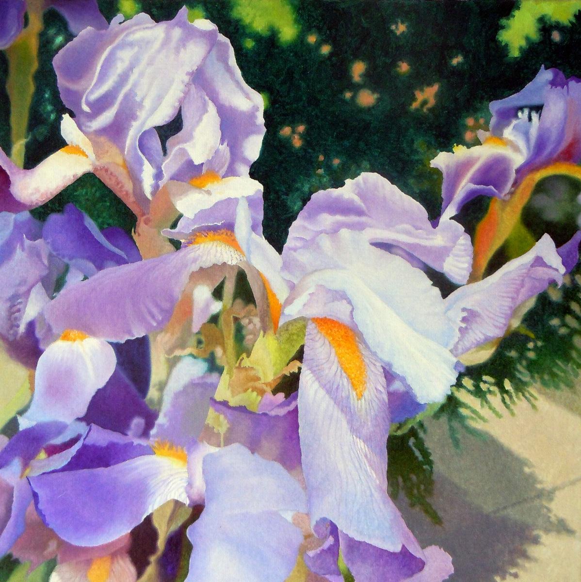 """Irises"" (large view)"