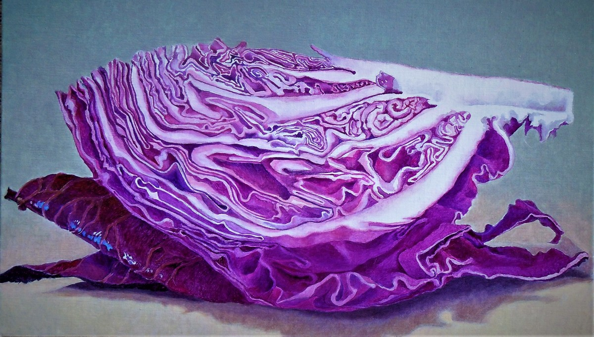 Cabbage (large view)