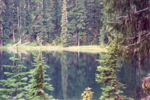Barclay Lake