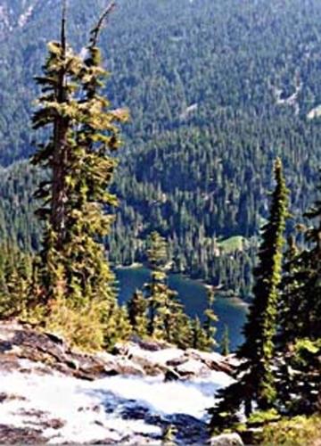 View of Trout Lake
