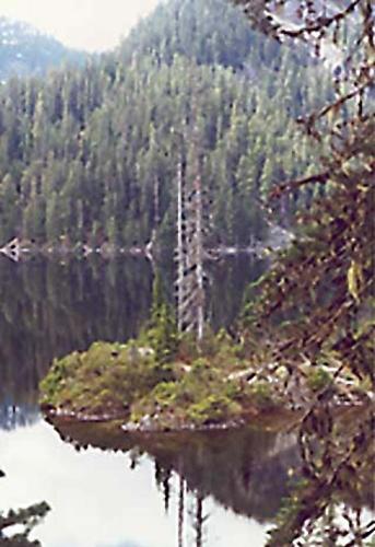 Dorothy Lake