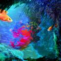 Aqualumina (thumbnail)