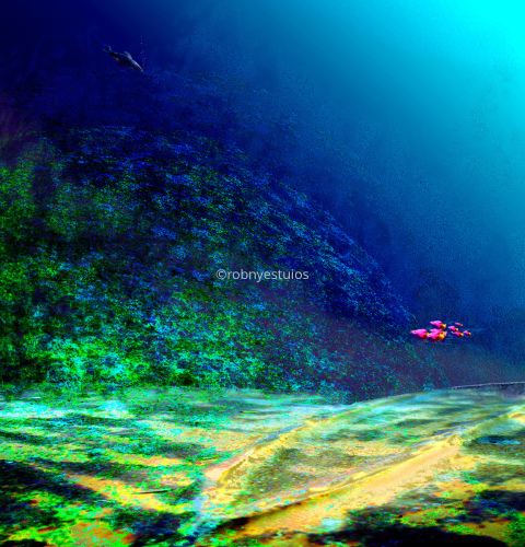 Painting--SeascapeSubsurface 1