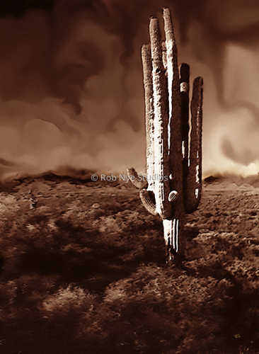The Sandstorm