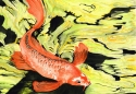 watercolor painting of an orange koi fish swimming in a pond with and abstract green, yellow and black background (thumbnail)