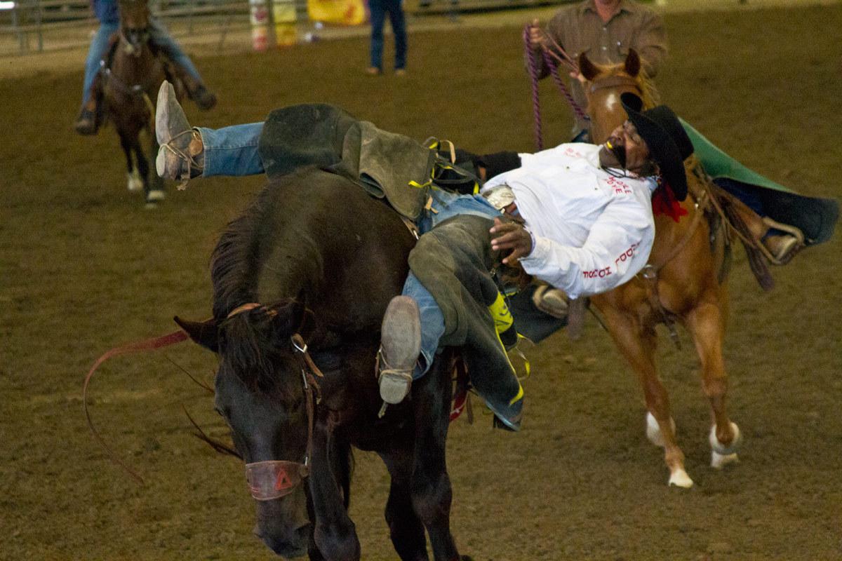 Bronc Cowboy (large view)