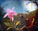 Painting--Oil-FloralCopy: Martin Johnson Heade
