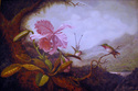 Copy- Martin Johnson Heade (thumbnail)