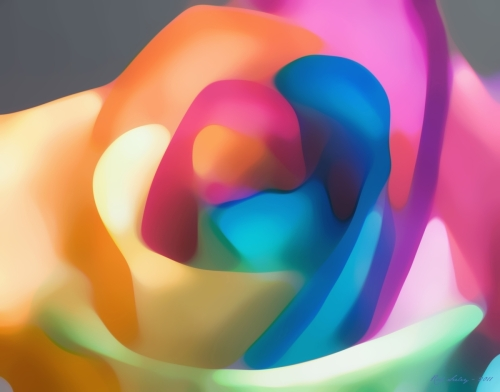 Rainbow Rose by Rod Seeley - Digital Artist