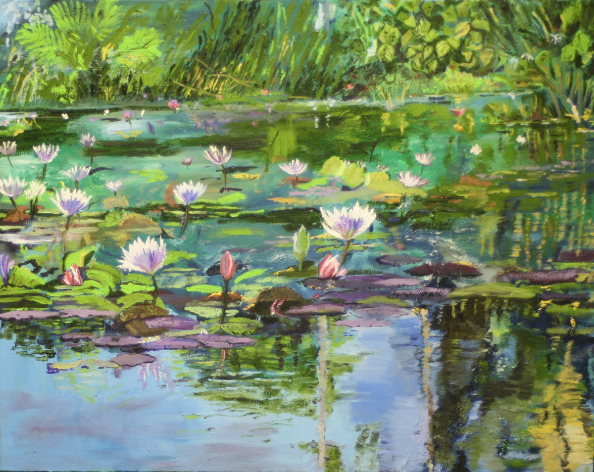 Water Lilies in a tropical botanical garden. (large view)