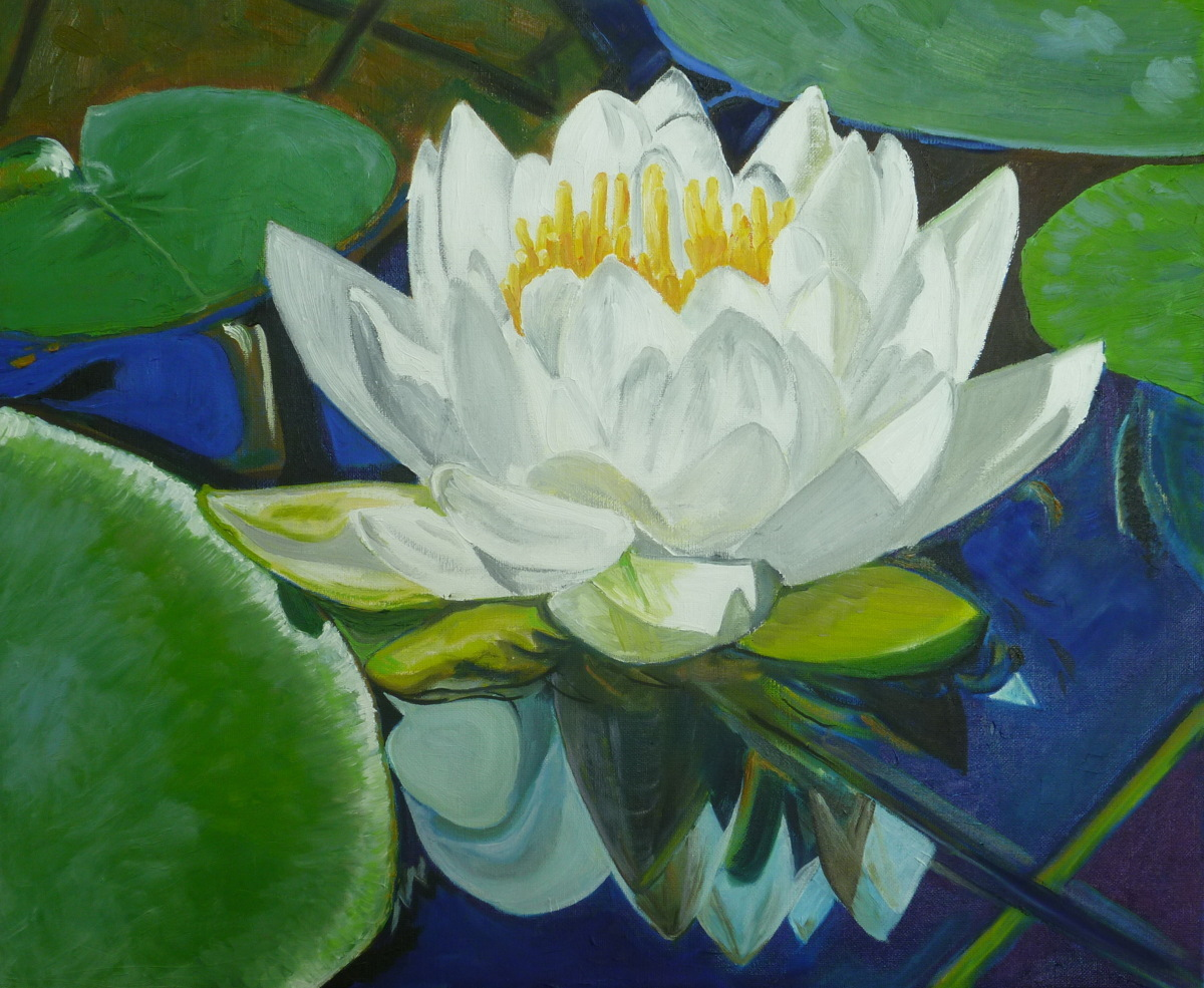 Water Lilies Nr. 13 (large view)