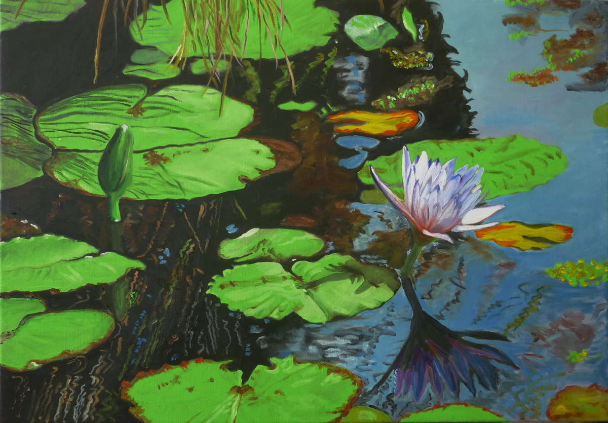 Water Lilies Nr. 14 (large view)