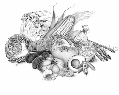 Fruits & Vegetables Pencil Drawings - Art.com