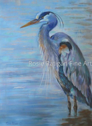 Mid Day Light - Great Blue Heron by Rosie Ratigan Fine Art