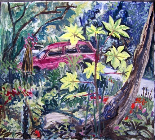 garden with jeep