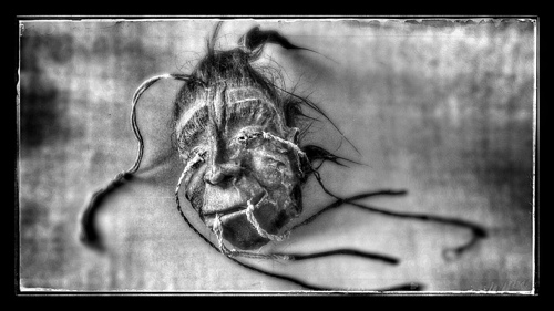 Black and White Shrunken Head