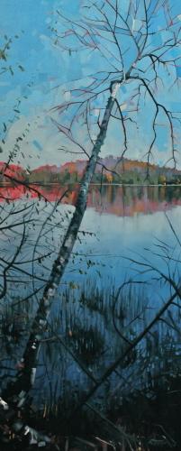 Otter Lake Birch View Reflection