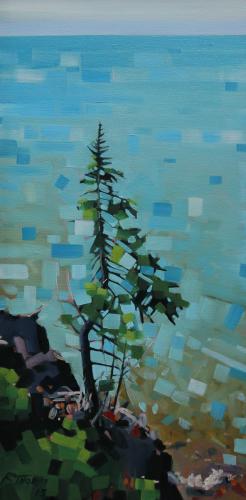 Cascade Park Pine
