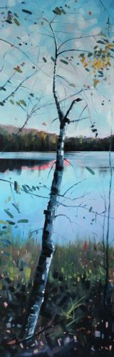 Otter Lake Birch Reflection #2
