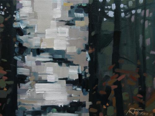 Birch Bark #3