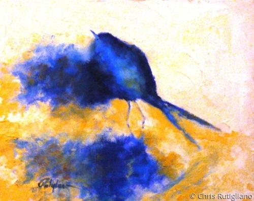 Blue Velvet (large view)