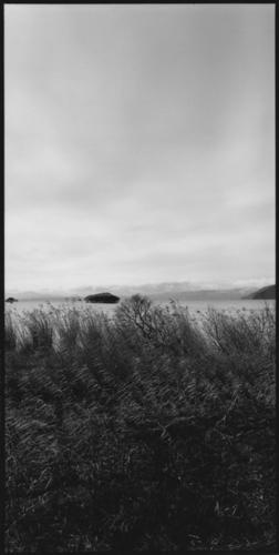Mother Lake#24 (large view)