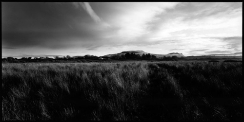 Ireland#4 (large view)
